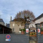 en-coulisses-le-repas-des-fauves-saint-vincent-des-landes-19